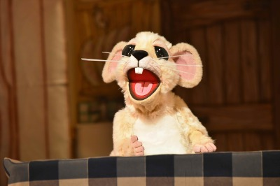 Mouse Muppet